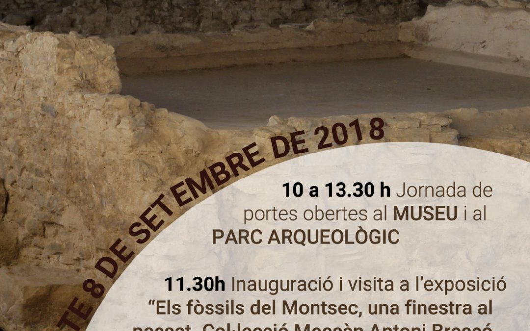 Festa Major de Guissona al Museu